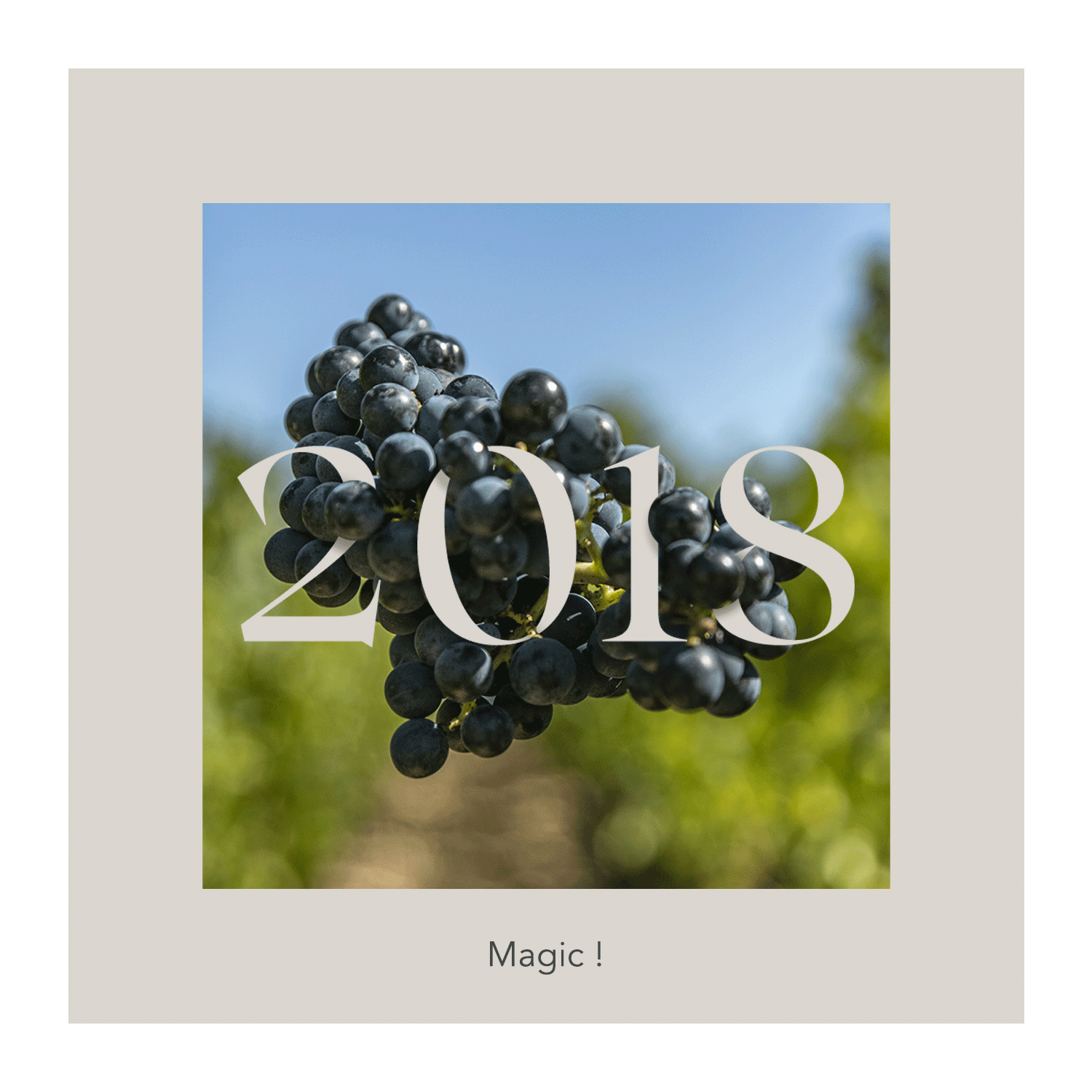 The 2018 vintage