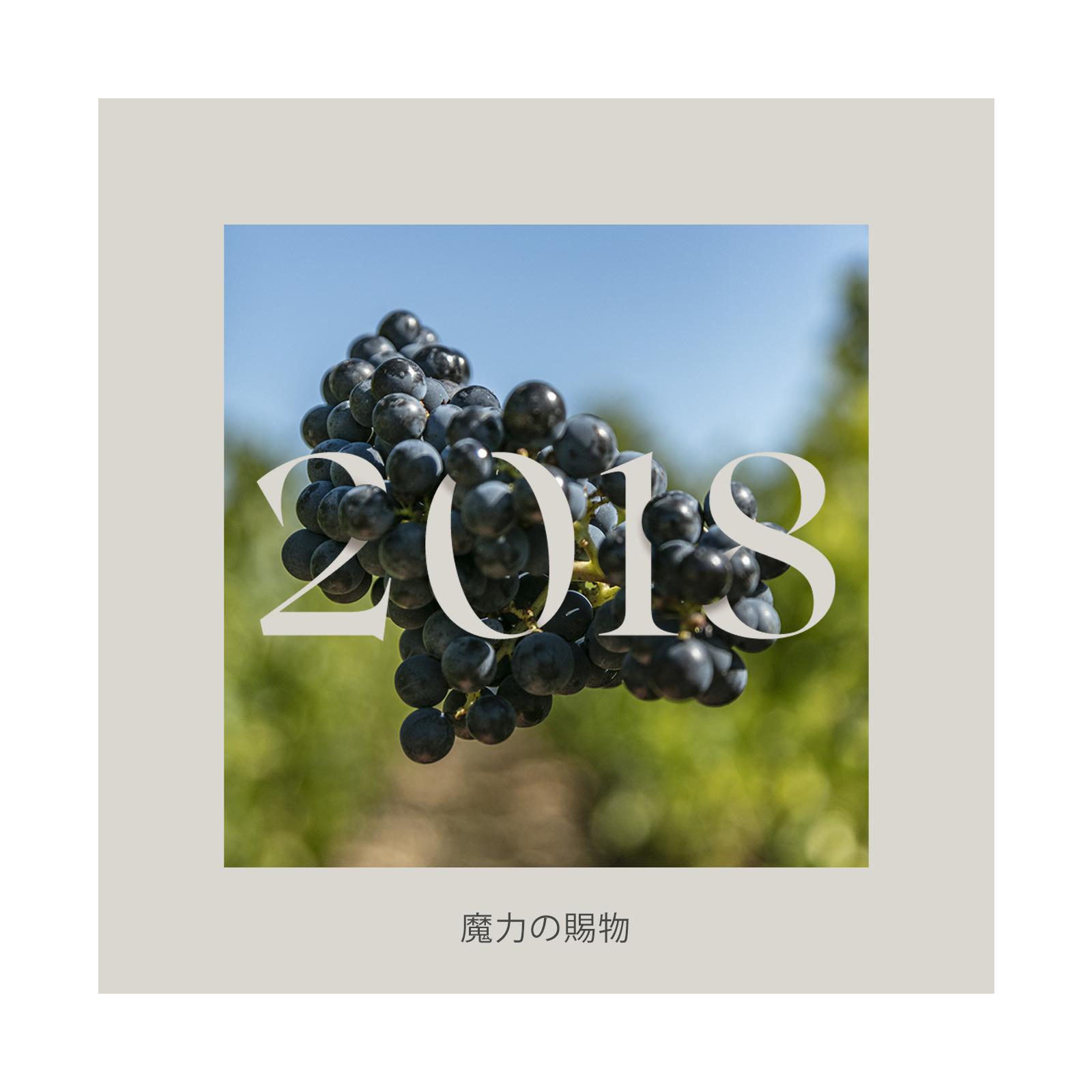 2018年ヴィンテージ